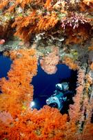 Shipwrecks, Divers